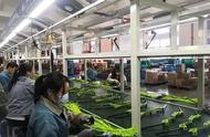 中国工厂的未来不是特斯拉